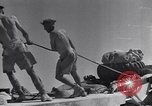 Image of British tank retriever North Africa, 1943, second 45 stock footage video 65675030882