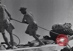 Image of British tank retriever North Africa, 1943, second 46 stock footage video 65675030882