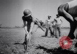 Image of P-38 Salerno Italy, 1943, second 21 stock footage video 65675030891