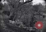 Image of 3rd Ranger Battalion Santa Maria Italy, 1943, second 44 stock footage video 65675030901