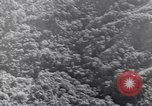 Image of aerial supply drops Pacific Theater, 1943, second 31 stock footage video 65675030915