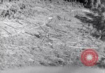 Image of aerial supply drops Pacific Theater, 1943, second 38 stock footage video 65675030915