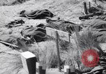 Image of Allied landings at Salerno Salerno Italy, 1943, second 2 stock footage video 65675030926