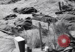 Image of Allied landings at Salerno Salerno Italy, 1943, second 3 stock footage video 65675030926