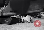 Image of B-24 dead tail gunner China, 1943, second 22 stock footage video 65675030936