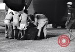 Image of B-24 dead tail gunner China, 1943, second 34 stock footage video 65675030936