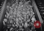 Image of coke screening and transport by Ford Dearborn Michigan USA, 1928, second 28 stock footage video 65675030984