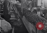 Image of Lumbering United States USA, 1929, second 36 stock footage video 65675030993