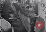 Image of Lumbering United States USA, 1929, second 37 stock footage video 65675030993