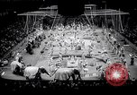 Image of circus wedding New York United States USA, 1966, second 7 stock footage video 65675031162