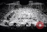 Image of circus wedding New York United States USA, 1966, second 11 stock footage video 65675031162