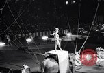 Image of circus wedding New York United States USA, 1966, second 23 stock footage video 65675031162