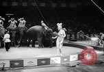 Image of circus wedding New York United States USA, 1966, second 28 stock footage video 65675031162