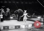 Image of circus wedding New York United States USA, 1966, second 32 stock footage video 65675031162