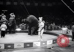 Image of circus wedding New York United States USA, 1966, second 33 stock footage video 65675031162