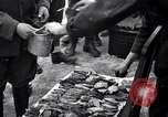Image of Italian troops Russia, 1942, second 34 stock footage video 65675031298