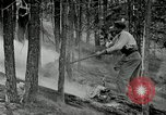 Image of fire fighting United States USA, 1929, second 25 stock footage video 65675031475