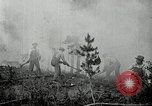 Image of fire fighting United States USA, 1929, second 41 stock footage video 65675031475