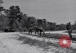 Image of Railroad safety United States USA, 1951, second 17 stock footage video 65675031553