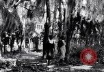 Image of Negro people South Carolina United States USA, 1936, second 34 stock footage video 65675031571