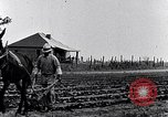 Image of mule drawn plow South Carolina United States USA, 1936, second 22 stock footage video 65675031579