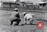 Image of mule drawn plow South Carolina United States USA, 1936, second 24 stock footage video 65675031579