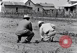 Image of mule drawn plow South Carolina United States USA, 1936, second 25 stock footage video 65675031579
