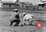 Image of mule drawn plow South Carolina United States USA, 1936, second 26 stock footage video 65675031579