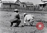 Image of mule drawn plow South Carolina United States USA, 1936, second 27 stock footage video 65675031579