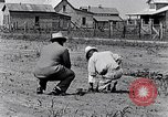 Image of mule drawn plow South Carolina United States USA, 1936, second 28 stock footage video 65675031579