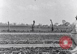 Image of mule drawn plow South Carolina United States USA, 1936, second 38 stock footage video 65675031579