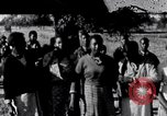 Image of African American education in rural south 1930s South Carolina United States USA, 1936, second 1 stock footage video 65675031581