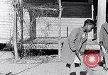 Image of African American education in rural south 1930s South Carolina United States USA, 1936, second 20 stock footage video 65675031581