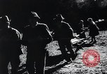 Image of Agricultural practices Germany, 1944, second 3 stock footage video 65675031597