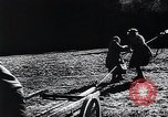 Image of Agricultural practices Germany, 1944, second 6 stock footage video 65675031597