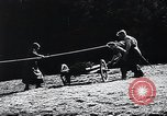 Image of Agricultural practices Germany, 1944, second 13 stock footage video 65675031597