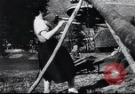 Image of Agricultural practices Germany, 1944, second 16 stock footage video 65675031597