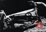 Image of Agricultural practices Germany, 1944, second 18 stock footage video 65675031597