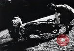 Image of Agricultural practices Germany, 1944, second 19 stock footage video 65675031597