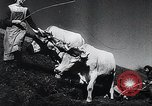 Image of Agricultural practices Germany, 1944, second 28 stock footage video 65675031597