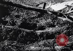 Image of Agricultural practices Germany, 1944, second 32 stock footage video 65675031597