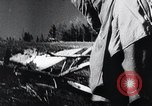 Image of Agricultural practices Germany, 1944, second 34 stock footage video 65675031597