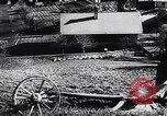Image of Agricultural practices Germany, 1944, second 39 stock footage video 65675031597