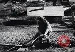 Image of Agricultural practices Germany, 1944, second 41 stock footage video 65675031597
