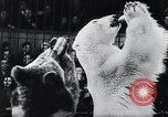 Image of German Circus during World War 2 Germany, 1944, second 8 stock footage video 65675031599