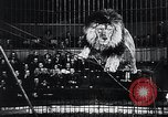 Image of German Circus during World War 2 Germany, 1944, second 26 stock footage video 65675031599
