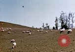Image of Monticello Charlottesville Virginia USA, 1944, second 7 stock footage video 65675031619