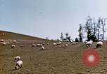 Image of Monticello Charlottesville Virginia USA, 1944, second 8 stock footage video 65675031619