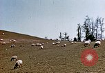 Image of Monticello Charlottesville Virginia USA, 1944, second 9 stock footage video 65675031619