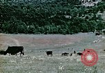 Image of Monticello Charlottesville Virginia USA, 1944, second 14 stock footage video 65675031619